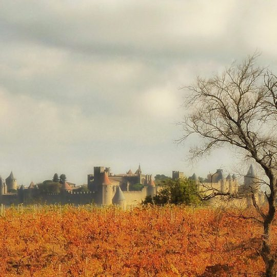 Medieval Carcassonne, Southern France