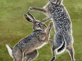 Two rabbits painting