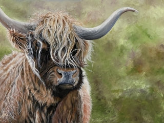 Highland cattle painting
