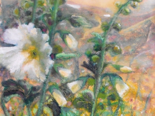 White Hollyhocks - Oil on Canvas Paper